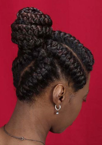 brandy norwood hairstyles : Braids - Brunette, Updos, Wedding hairstyles, Styles, Female, Adult ...