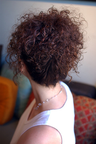 Back View  - Curly hair Hairstyle Picture
