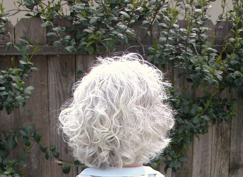 Silver Curly - 3b, Mature hair, Short hair styles, Medium hair styles, Readers, Female, Curly hair, Gray hair Hairstyle Picture