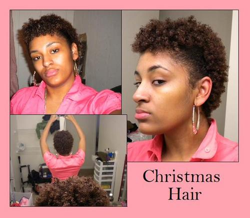 Pinned up Sides - Brunette, 4a, Short hair styles, Kinky hair, Styles, Female, Black hair Hairstyle Picture