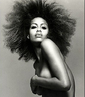 Shakara Ledard - Celebrities, Kinky hair, Long hair styles, Female Hairstyle Picture