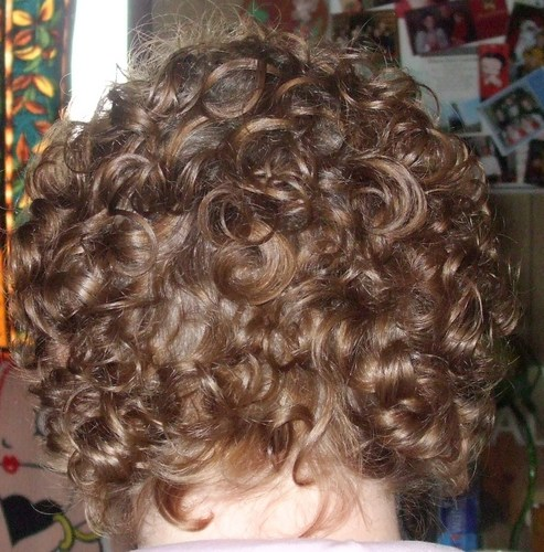 Back view of short curly do - Blonde, 3a, Short hair styles, Curly hair Hairstyle Picture