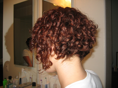 Hairstyles For Short 3a Hair: Inverted Bob.. By Tarry